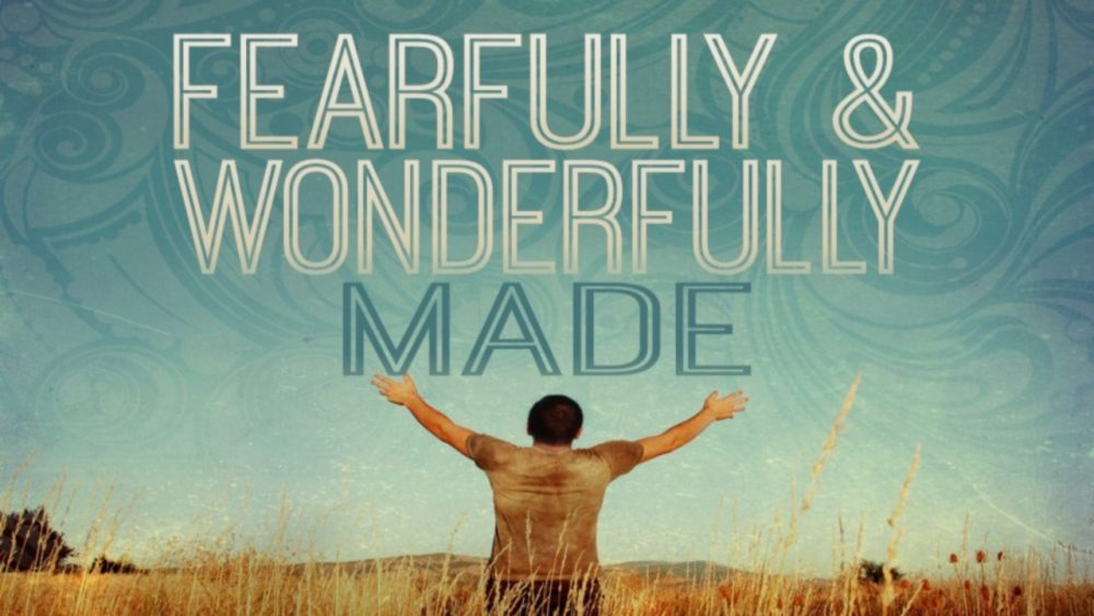 Fearfully & Wonderfully Made Image
