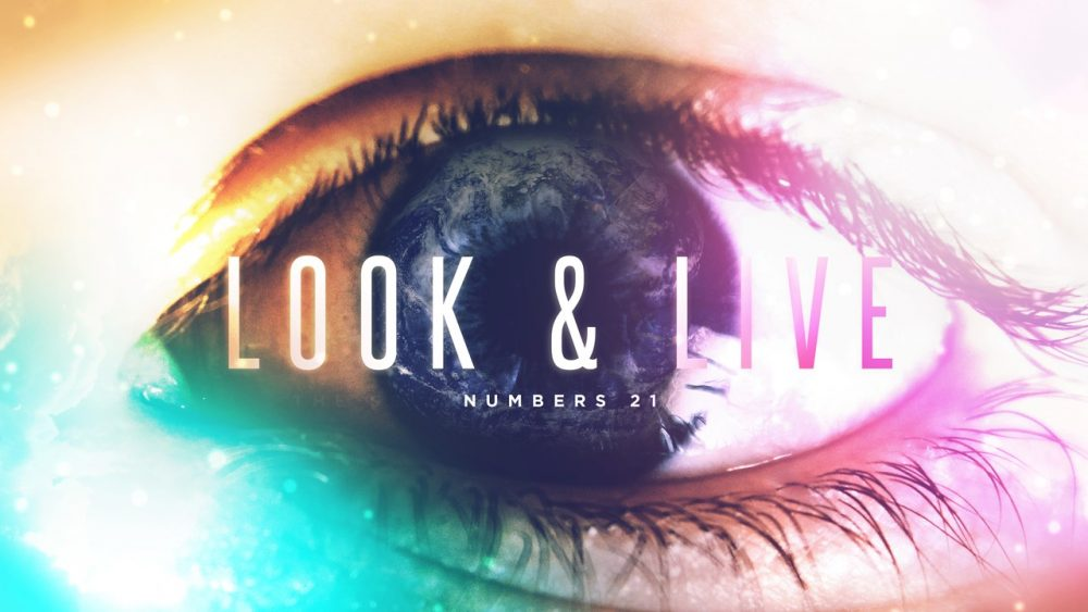 Look & Live Image