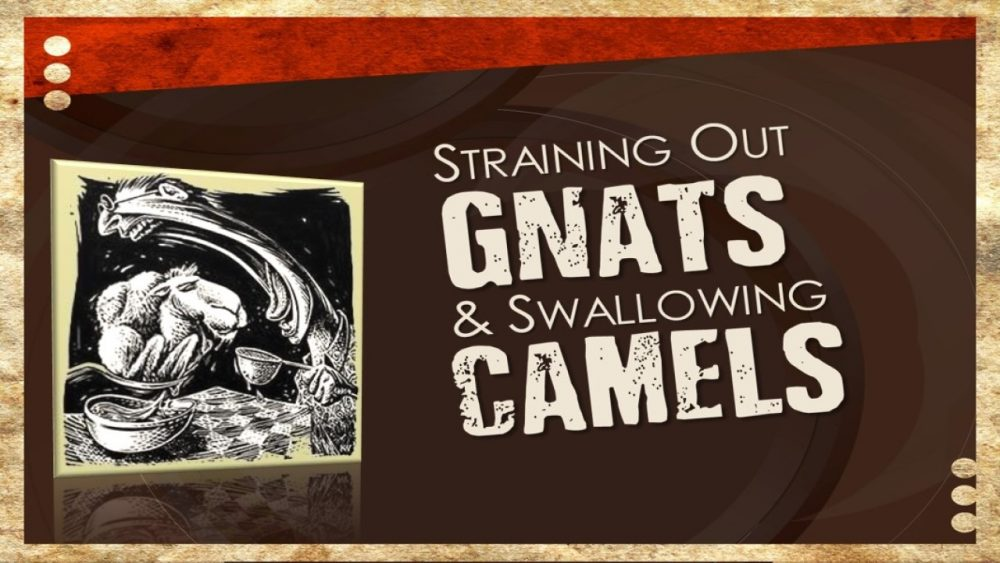 Straining Gnats & Swallowing Camels Image