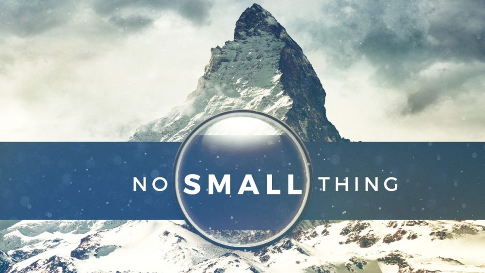 No Small Thing Image