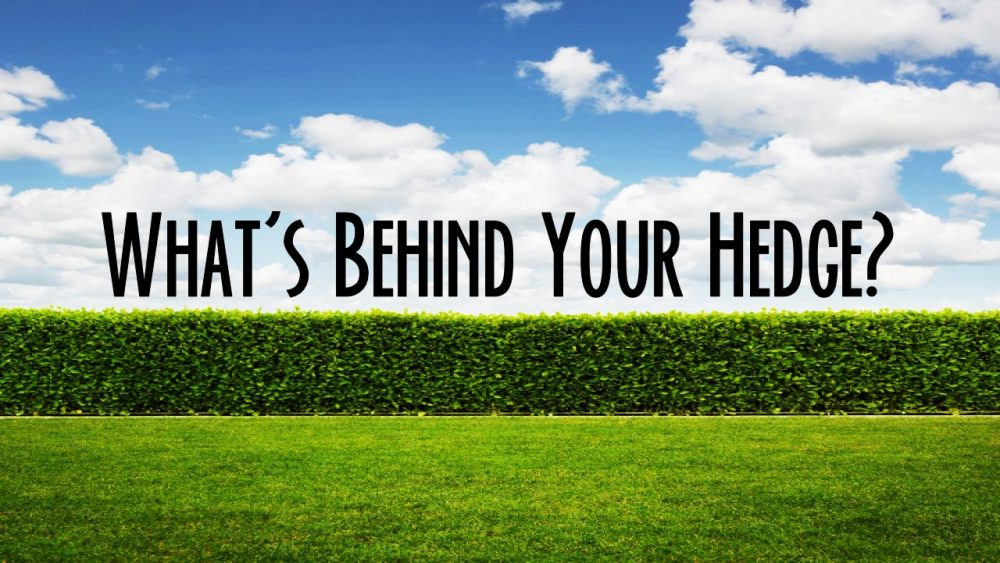 What\'s Behind Your Hedge?
