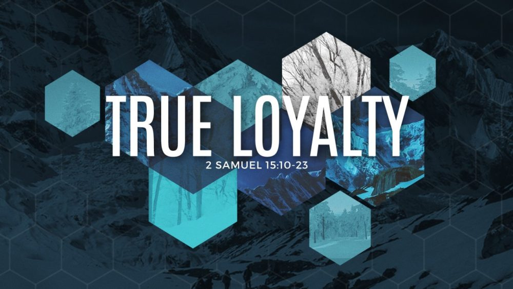 True Loyalty Image