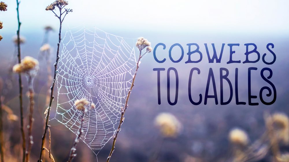 Cobwebs to Cables Image