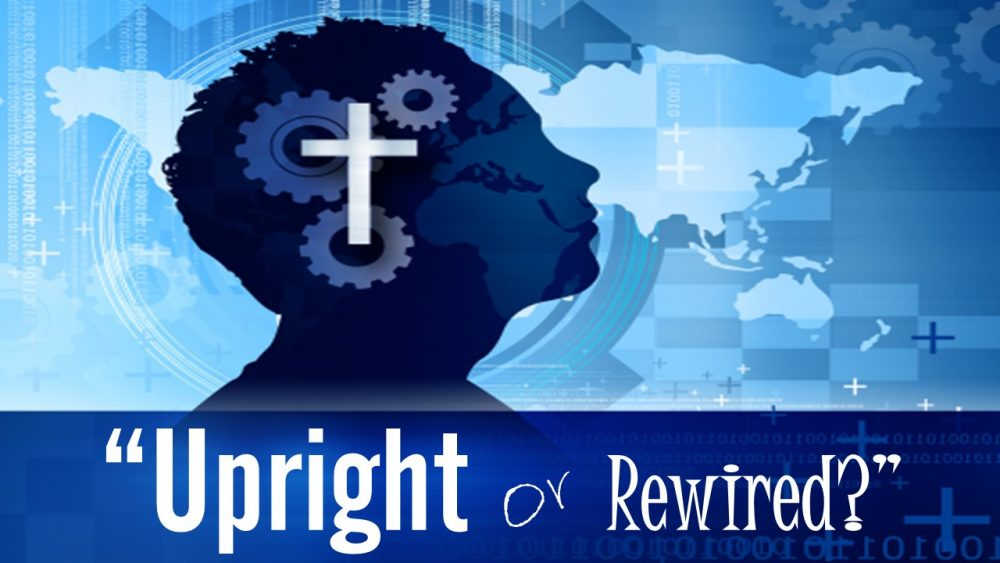 Upright or Rewired? Image